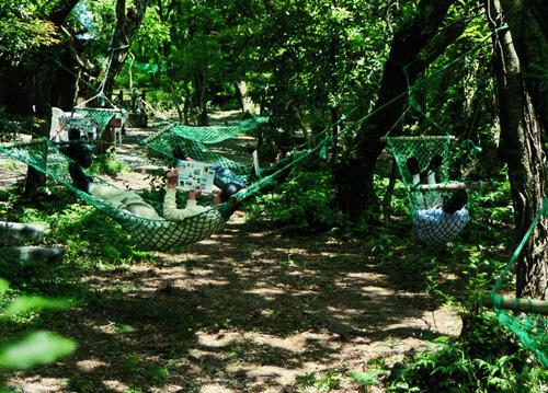 里沙生态园