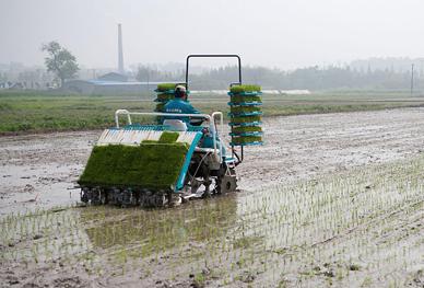 嵊州新闻网网友新农机摄影采风掠影