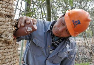 给树输入营养液