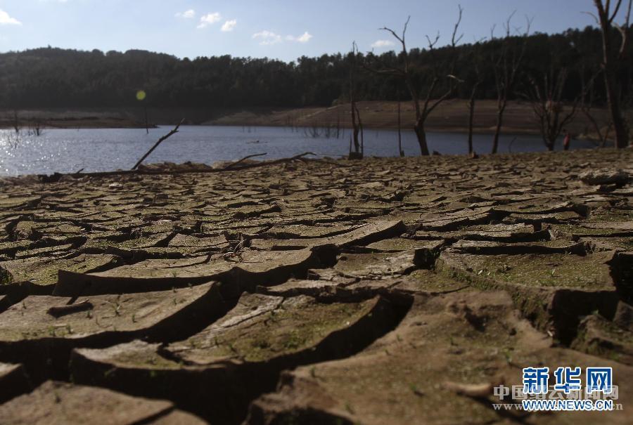 守护生命之水 水之殇实乃地球之痛人类之忧图片
