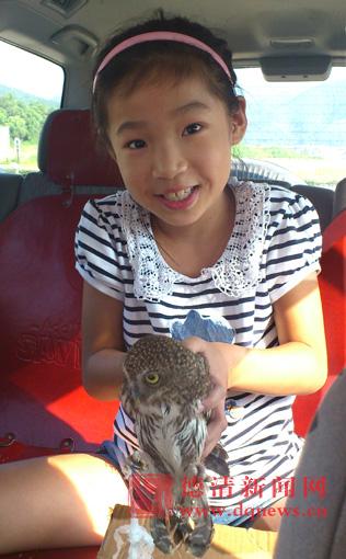小女孩幼鲍_9岁小女孩 护送幼鹰找\