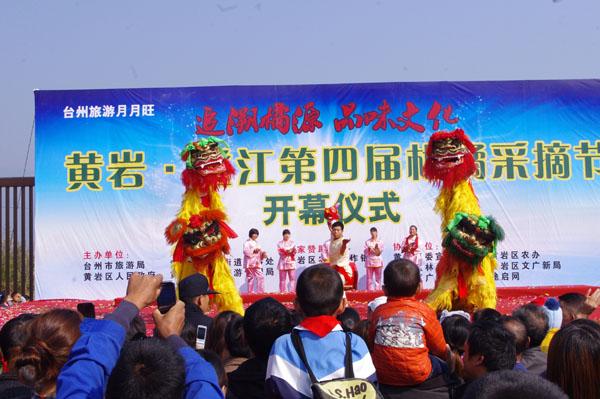 澄江第四届柑橘采摘节开幕