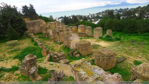 ...是迦太基遗址,人们都说如果来到突尼斯,迦太基古城遗址是必须