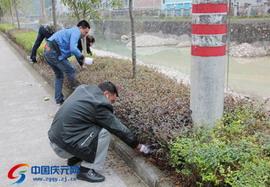 左溪镇开展清洁家园活动