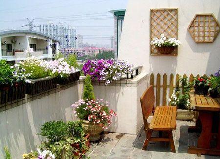 三招让阳台变身温馨的小花房