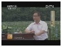CCTV-7《乡约》走进龙游