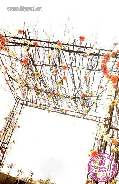 橘园新娘_户外草坪烛光婚礼布置--绍兴频道