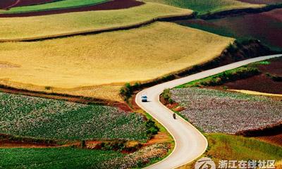 【行行摄摄】美丽的田野