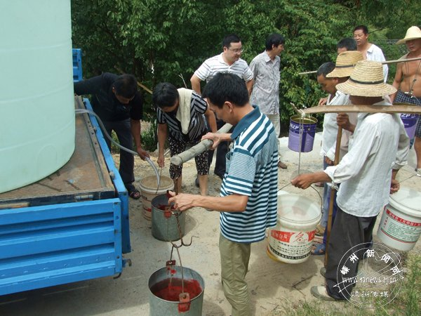 巾帼志愿者送水抗旱