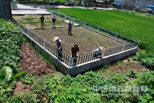 农村污水处理效率提升
