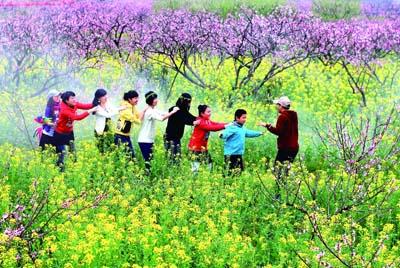 农业节庆活动_松江区农业节庆_二十四节气_传统节日_农事活