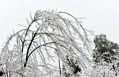 【行行摄摄】天姥山冰雪世界