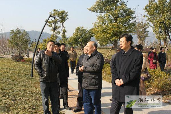 """富阳市大力实施""""五大森林工程""""建设森林城市图片"""