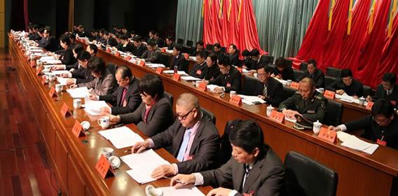 县十五届人大三次会议第二次大会