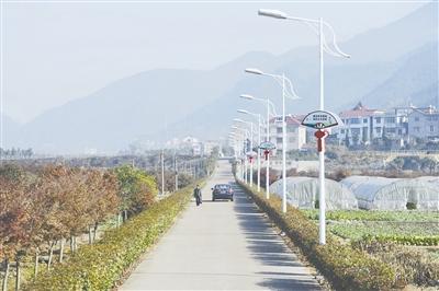 江山 美丽/美丽乡村路