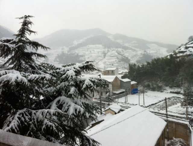 雅璜乡迎来2014年第一场雪