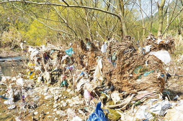 长乐水竹村段溪:上游扔垃圾 下游堆成团
