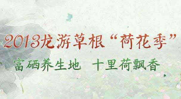 """2013龙游草根""""荷花季"""""""