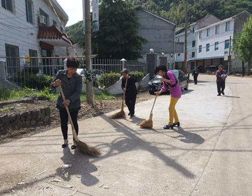 雅璜乡妇联开展集中清扫行动