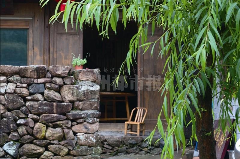宁静/宁静的庭院