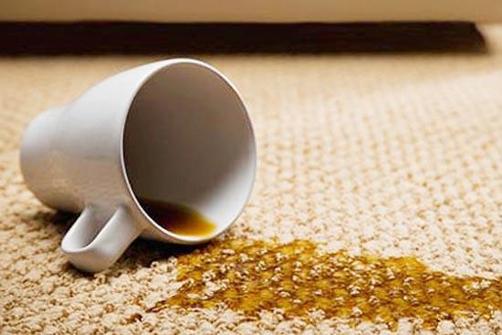 地毯清洁与保养