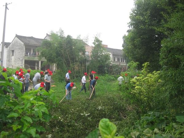 路家园村志愿者种植景观树木