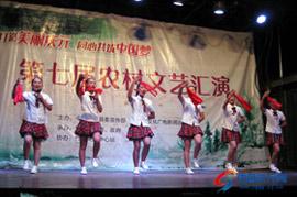 竹口镇举办第七届农村文艺汇演