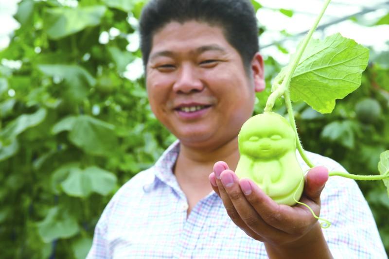 放心农产品的新卖点―――四问业主为何热衷创意农业