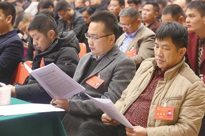 区十五届人大四次会议举行第二次大会