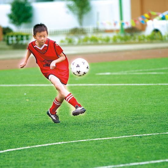 该校的足球队曾获浙江省校园足球