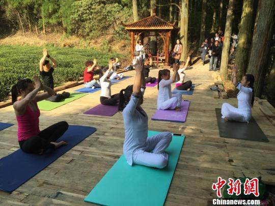 华顶国家森林公园内的瑜伽爱好者在练瑜伽 臧涵 摄