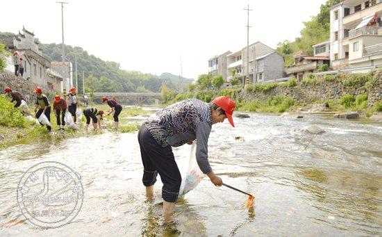 下王镇村嫂志愿者服务队:一个团队的治水事
