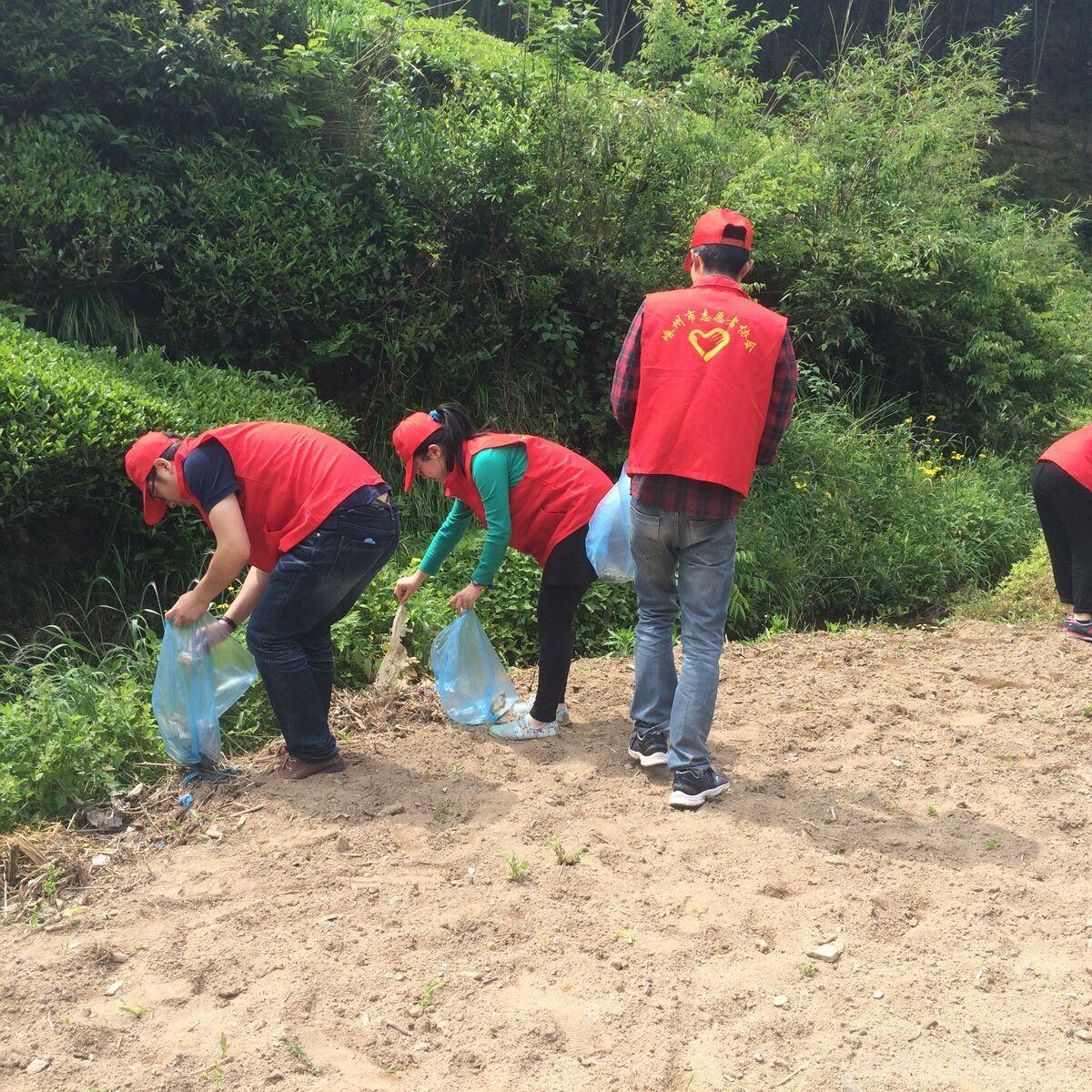 雅璜乡开展五四系列志愿活动