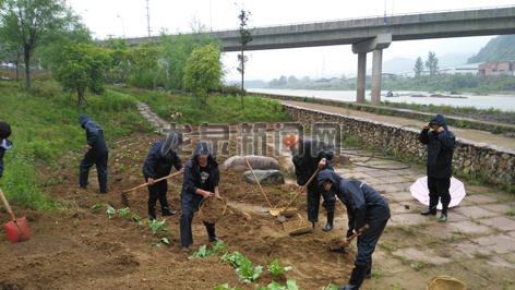 水利局执法人员清理农作物、杂物