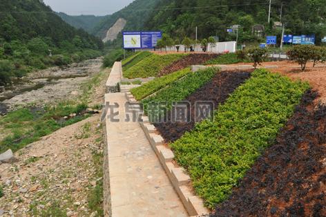 岩樟溪水源保护地入口处景观工程基本完工