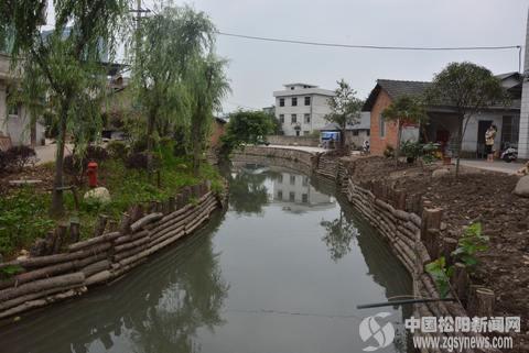 白龙圳内河整治成效明显 水质明显提升