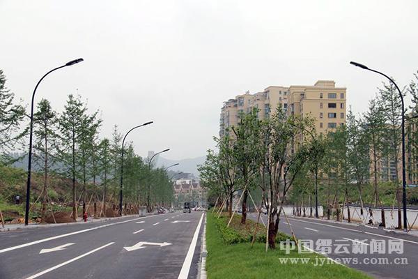 缙云:改善人居环境 再掀绿化造林新高潮