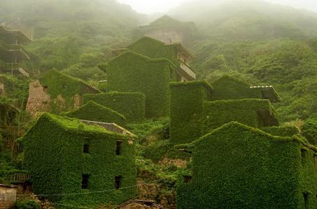 浙江舟山一荒废海岛宛如绿色童话世界