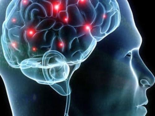 人脑需要知道的16个冷知识 每人每天7万个想法