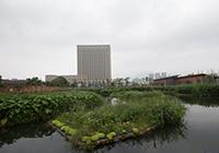 江滨湿地公园