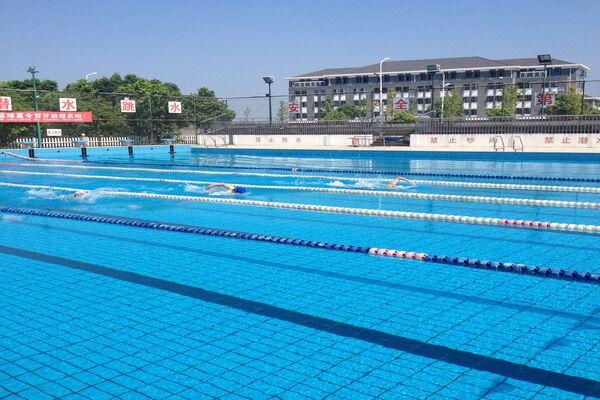 百乐社区参加梧桐街道游泳比赛