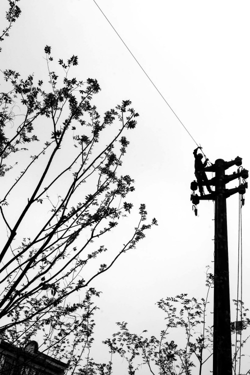 改电网 迎盛会