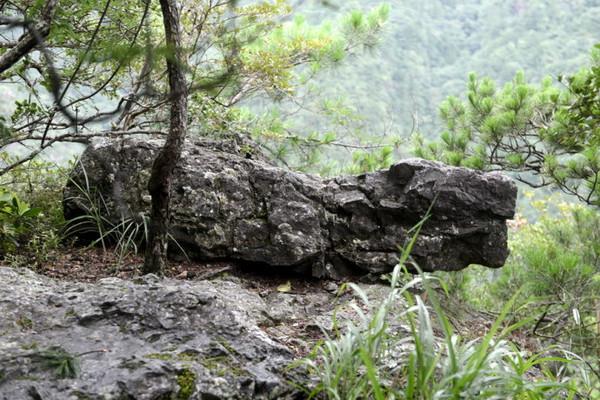 """跟乌龟结拜-士   桃源三结义,也叫""""三松斗云""""   试剑石   第二天,雨还在下,我们"""