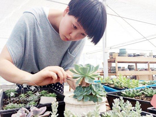 王佳:创业,从自己的兴趣出发