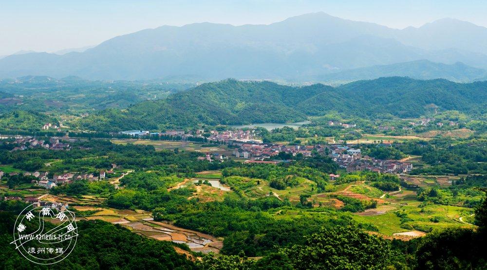 王智伟 《绿色小山村》