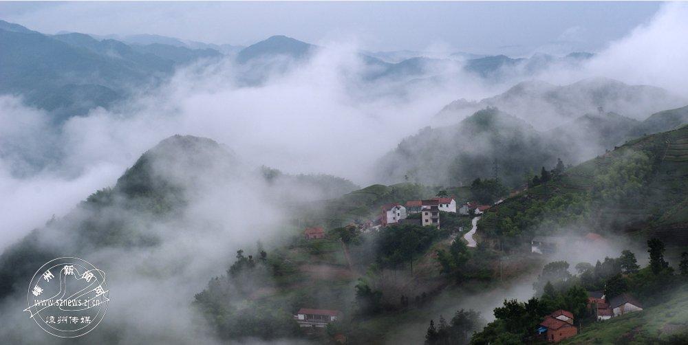 张建秋 《雾里春色》