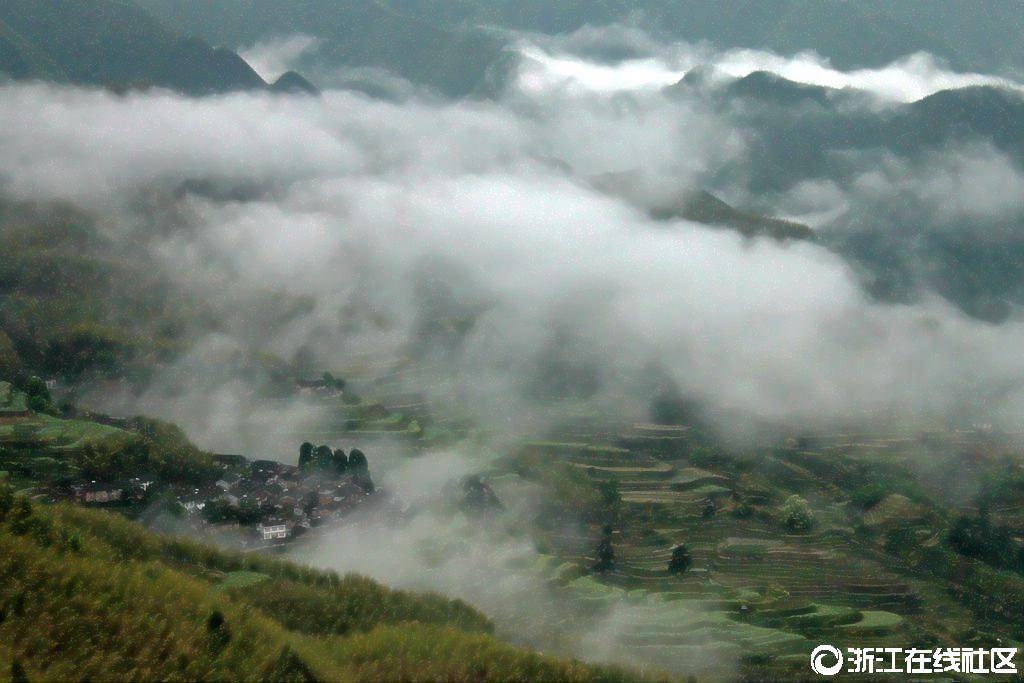 【行行摄摄】云雾山中