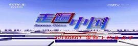 《走遍中国》 20160607 发丝上的金点子