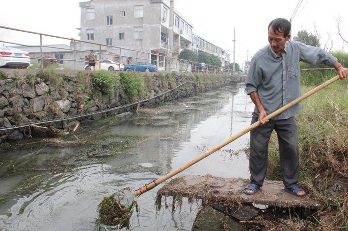 河道清理忙
