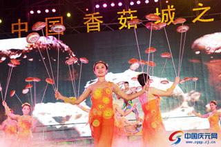 """美哉庆元 """"中国香菇城之夜""""文艺晚会举行"""